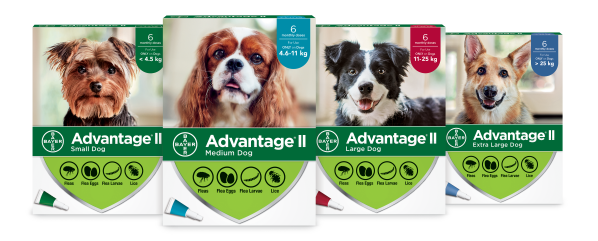 Advantage®II Dog Flea Treatment Range