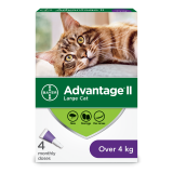 AdvantageII_03_Large-Cat_4_EN_Front_POP-png