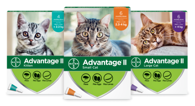 Advantage®II for Cats