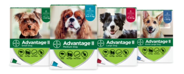 Advantage®II for Dogs