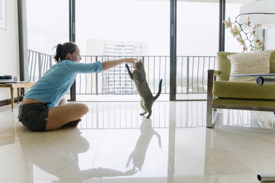 cat playing with woman